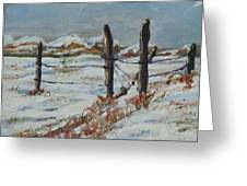 Old Fences Greeting Card