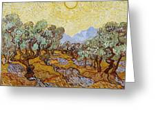 Olive Trees With Yellow Sky And Sun Greeting Card