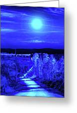 On A Cold Cold Night Greeting Card