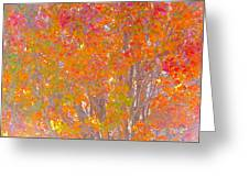 Orange And Red Autumn Greeting Card