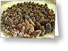Organize Pinecones Greeting Card