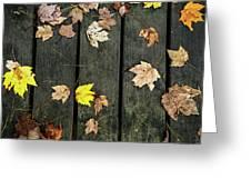 Original Autumn Foliage Greeting Card