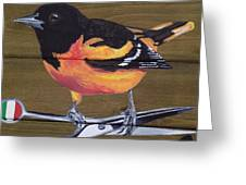 Oriole 2 Greeting Card