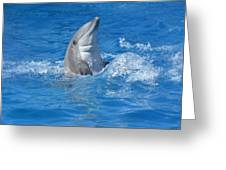 Out Of The Blue 2 Greeting Card