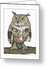Owl In Pose Greeting Card