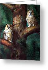 Owls In Moonlight Greeting Card