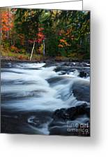 Oxtongue River Ontario Autumn Scenery Greeting Card