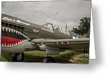 P - 40 Warhawk Greeting Card