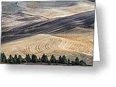 Palouse Field 2740 Greeting Card