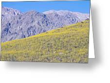 Panoramic View Of Desert Gold Yellow Greeting Card