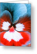 Pansy Power 86 Greeting Card
