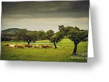 Pasturing Cows Greeting Card