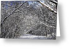 Path In Winter Forest Greeting Card