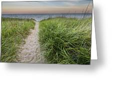 Path To Pierport Beach Greeting Card