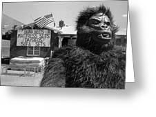 Patriotic Gorilla Pitchman July 4th Mattress Sale Tucson Arizona 1991 Greeting Card