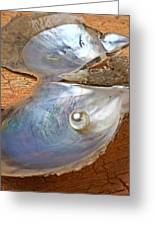 Pearl In Oyster Shell Greeting Card by Garry Gay