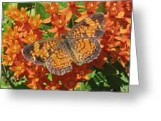 Pearly Crescentspot Butterfly Greeting Card