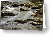 Pebble Creek Greeting Card