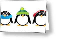 Penguins Isolated Greeting Card by Jane Rix