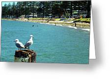 Pilot Bay Beach 4 - Mount Maunganui Tauranga New Zealand Greeting Card
