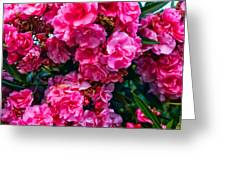 Pink Flowers Green Leaves Greeting Card