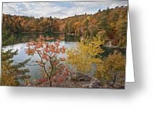 Pink Lake Greeting Card