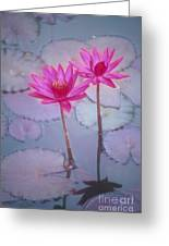 Pink Lily Blossom Greeting Card