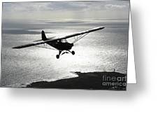 Piper L-4 Cub In Us Army D-day Colors Greeting Card