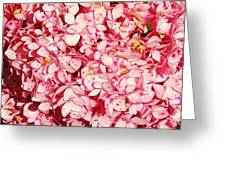 Prettiest Pink Greeting Card