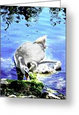 Psychedelic Mute Swan And Cygnet Feeding Greeting Card