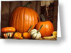 Pumpkins And Gourds Still Life Greeting Card