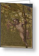 Putto Gathering Grapes Greeting Card