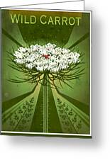 Queen Anne's Lace Print Greeting Card