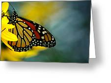 Queen Monarch Greeting Card