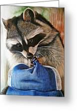 Raccoon Cap Greeting Card