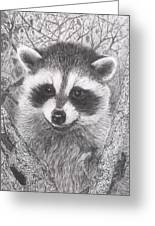 Raccoon Kit Greeting Card