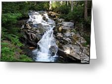 Rainier Waterfall Greeting Card