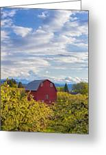 Red Barn And Mt Hood Greeting Card
