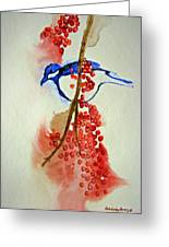 Red Berry Blue Bird Greeting Card