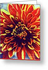 Red Flower 92 Greeting Card