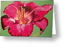 Red Lily Valley Greeting Card
