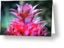 Red Pineapple Greeting Card