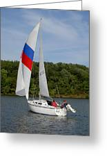 Red White And Blue Sails Greeting Card
