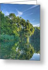 Reflections Of A Weeping Willow Greeting Card