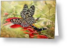 Rice Paper Butterflies Greeting Card