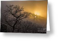 Rime Ice And Fog At Sunset - Telephoto Greeting Card