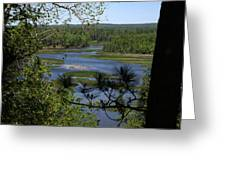River And Trees Greeting Card