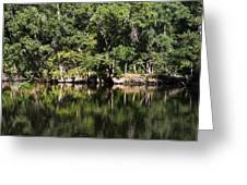 River In The Jungle Greeting Card