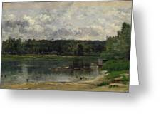 River Scene With Ducks Greeting Card