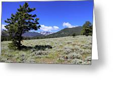 Rocky Mountain Foothills Greeting Card
